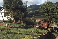 Vista do Jardim do Museu da Família